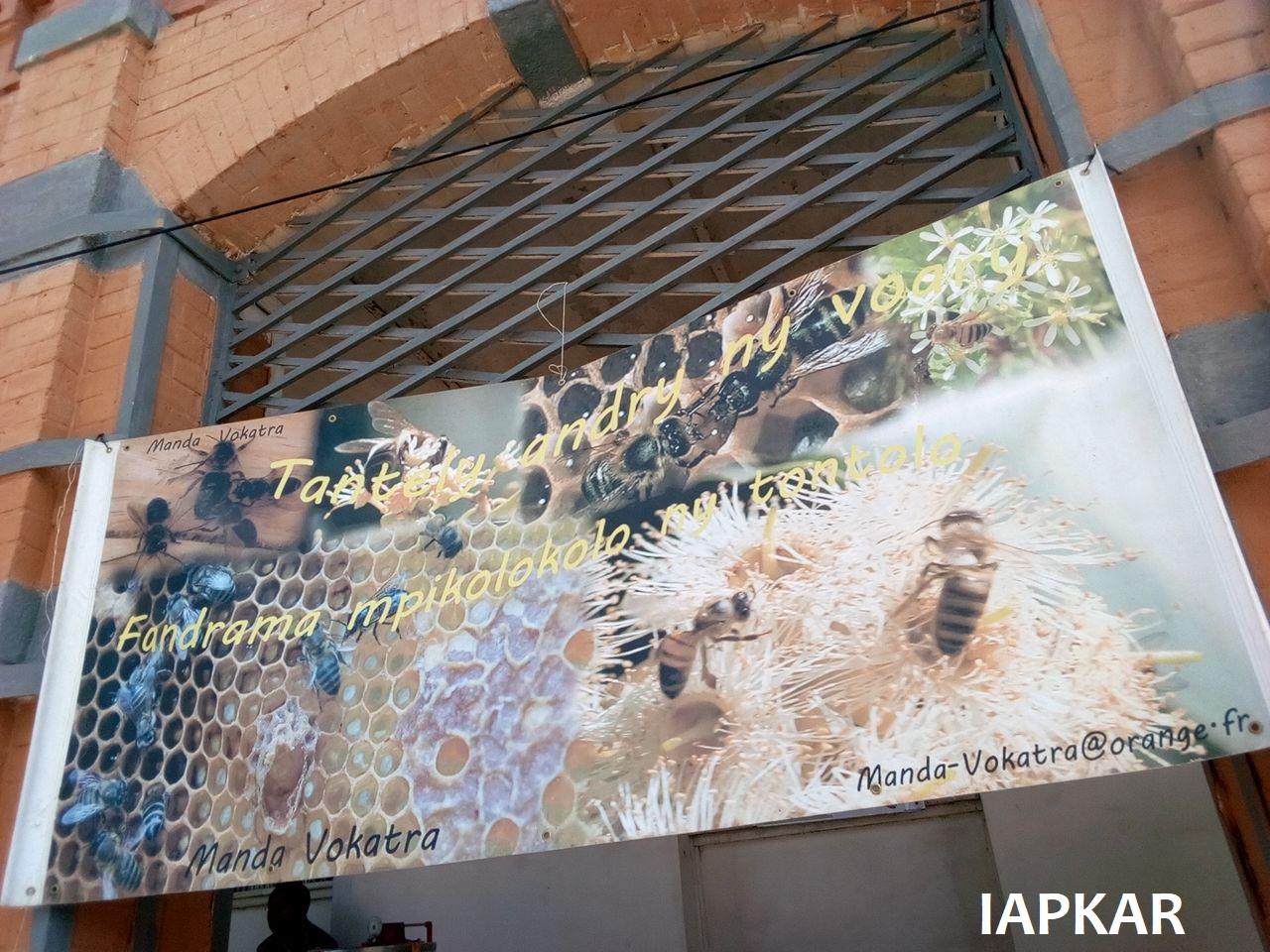 2018-10 IAPKAR Exposition Manda Vokatra