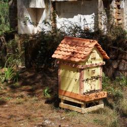 Lres ruches de Manda Vokatra
